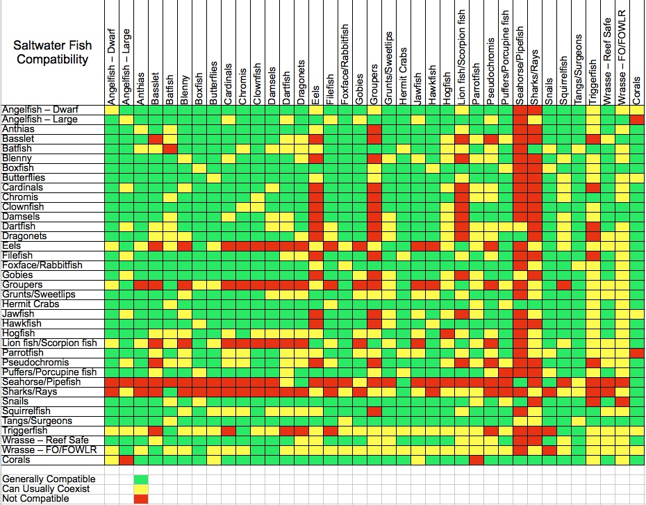 saltwater fish compatibility - Fish Compatibility, Chart ...