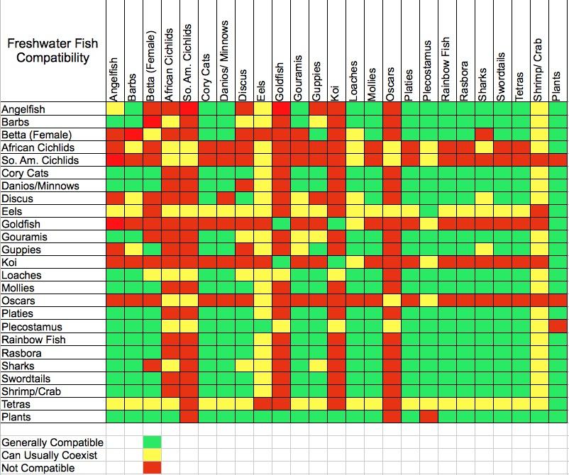 Freshwater fish compatibility aquarium tip tank for Saltwater fish compatibility chart